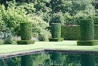 Topiary or not topiary