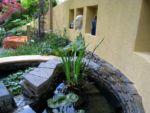 j-s-scapes-chelsea-medicinal-garden