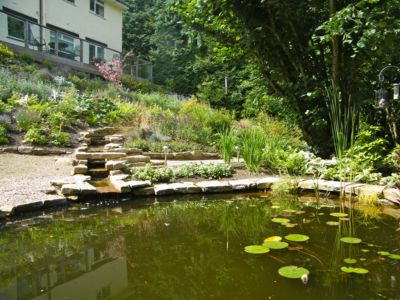 j-s-scapes-pond-and-stream